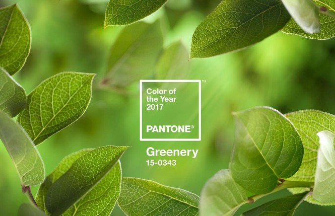 Pantone Color of the Year for 2017 Is Everything We All Need pantone color of the year Pantone Color of the Year for 2017 Is Everything We All Need Pantones Color of the Year for 2017 Is Everything You Might Wish For 1