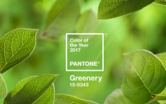 Pantone Color of the Year for 2017 Is Everything We All Need