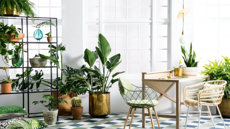 Mood Board Why You Should Use Pantone Color of The Year This Summer 7 greenery Mood Board: Why You Should Use Greenery This Summer Mood Board Why You Should Use Greenery This Summer 7