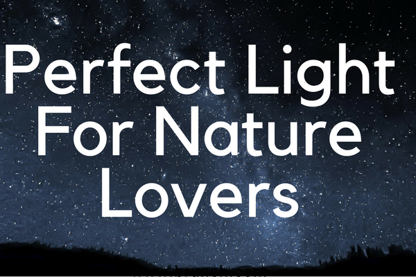 Perfect Light For Nature Lovers