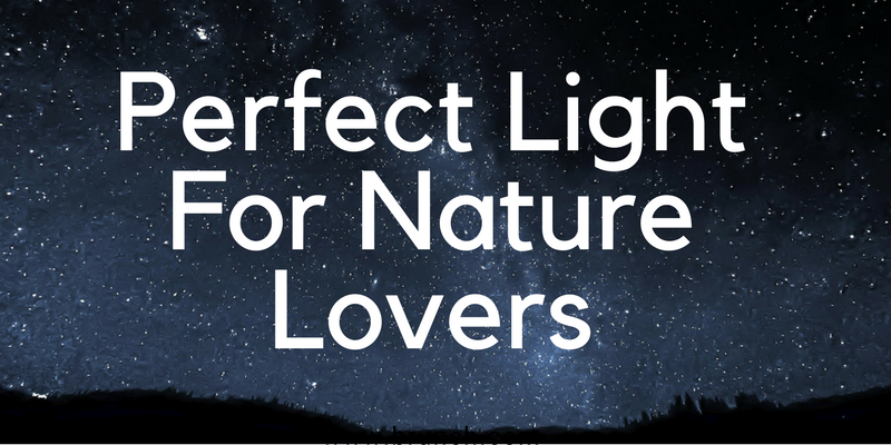 Perfect Light For Nature Lovers modern floor lamps Nature Lovers These Are The Modern Floor Lamps For You! Perfect Light For Nature Lovers